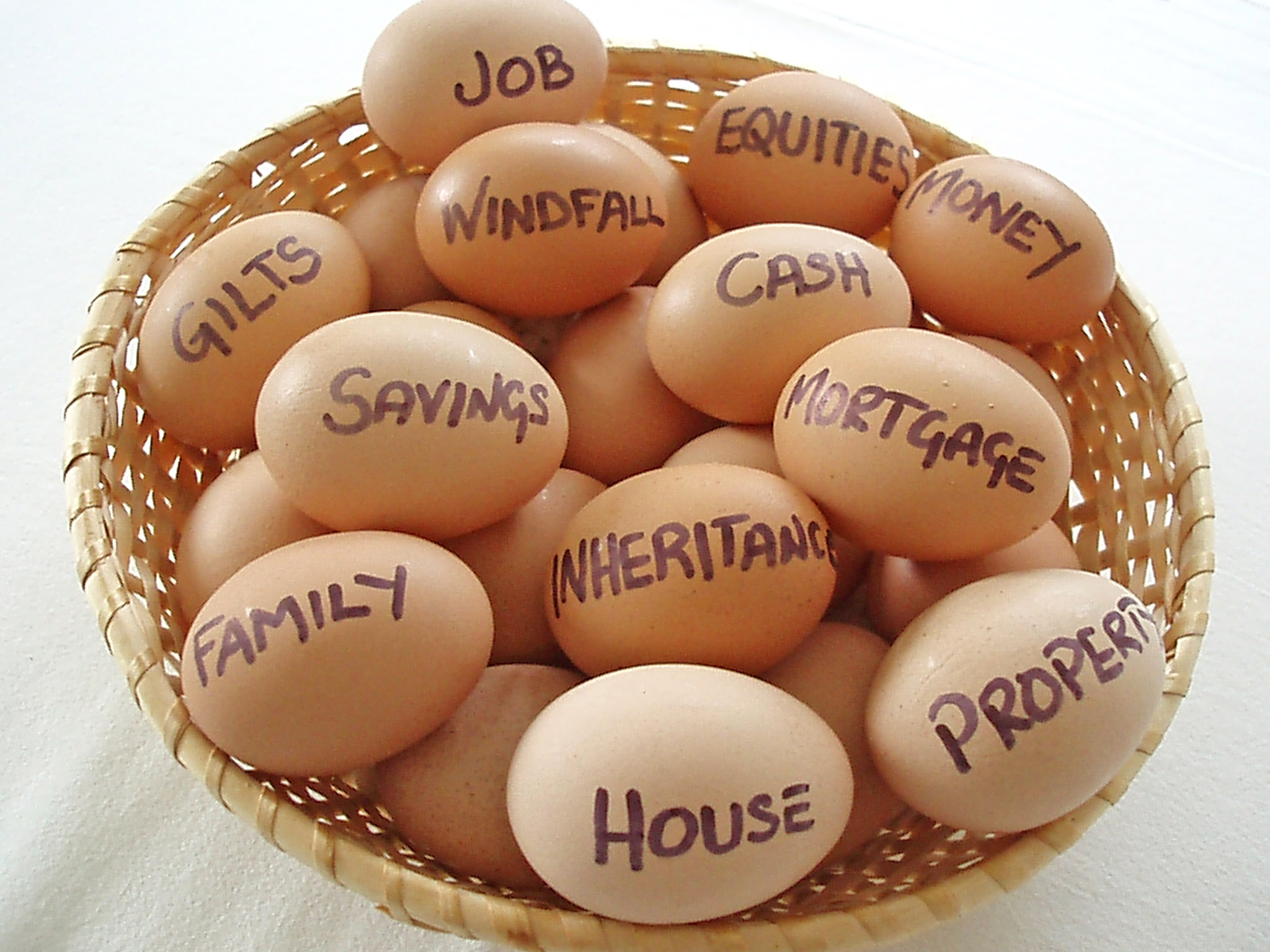 eggs in a basket - Which Financial Planning Software is Right For You?