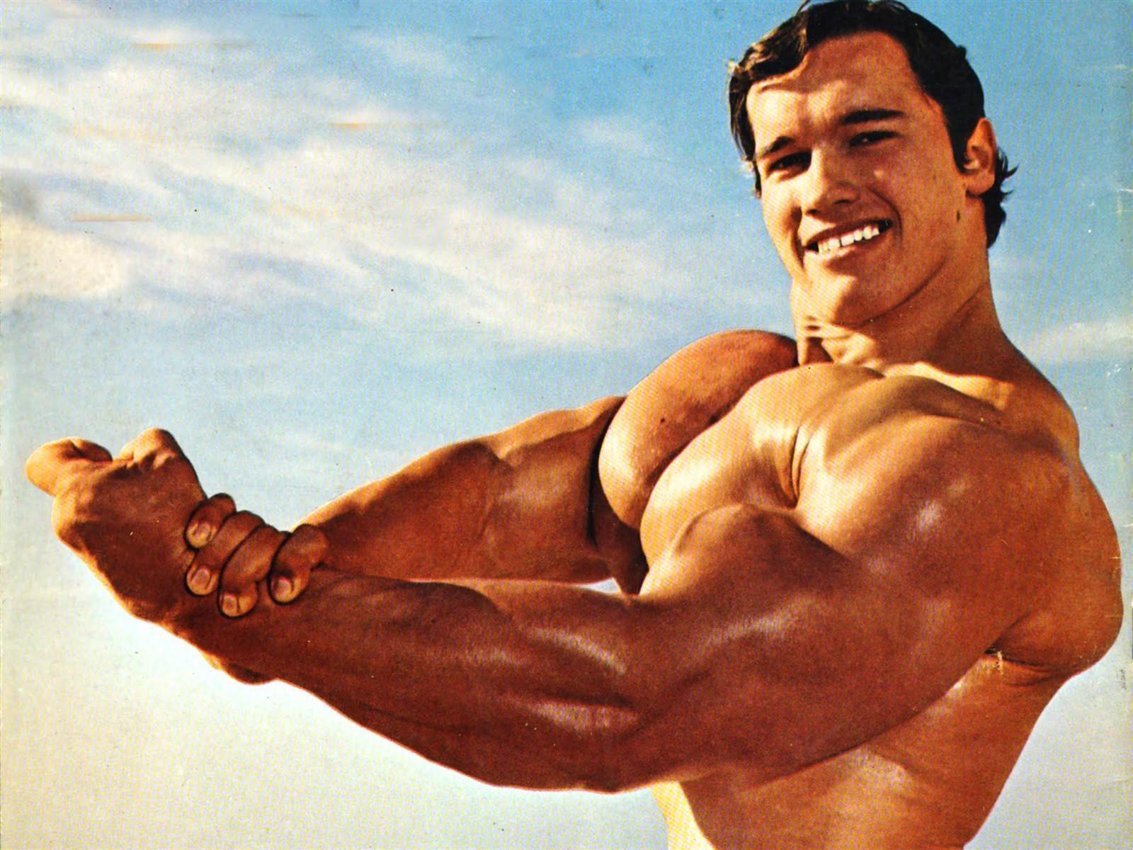 arnold schwarzenegger bodybuilder wallpaper - Orion Advisor Services Pumps Up Financial Planning with ASI Integration